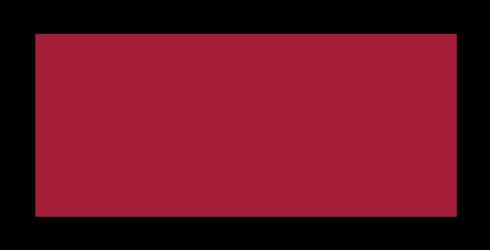 Alumni Portfolios | VFS Digital Design